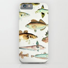 Illustrated Colorful Southern Pacific Ocean Exotic Game Fish Identification Chart No. 4 iPhone Case