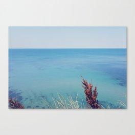 Marine blue Canvas Print