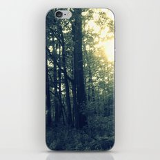 Dual Nature iPhone & iPod Skin