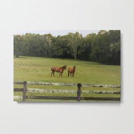 No Horse Play Metal Print