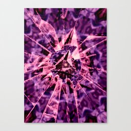 Pink Crack Canvas Print