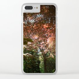 Autumn Beeches Clear iPhone Case