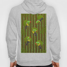 Toucan Party! Hoody