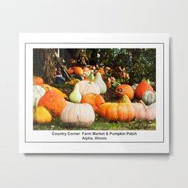 Pumpkin Patch - Alpha, Illinois Metal Print