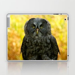 Owl Staring Contest Laptop & iPad Skin