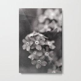 Black and White Botanical Flower Study 1 Metal Print