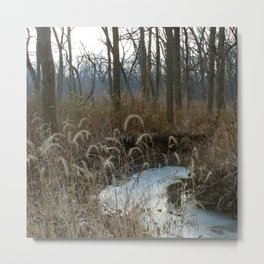 Until the Fawn Metal Print