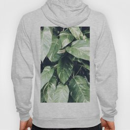 Natural Background 61 Hoody