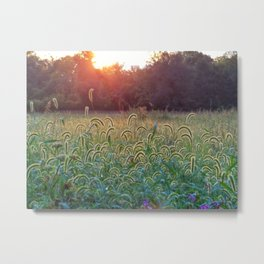 Field of light Metal Print