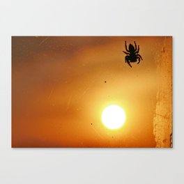 sundown syndrome Canvas Print
