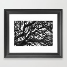 Tangled Up Framed Art Print