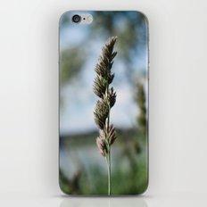 Grass in the Wind iPhone & iPod Skin