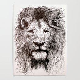 Lion Drawing Illustration Ink Black and White Poster