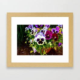 Purple Pansy Garden Galore! Framed Art Print