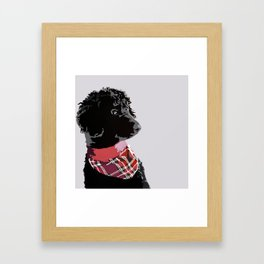 Black Standard Poodle in Grey and Red Framed Art Print