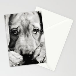 Ryder Stationery Cards