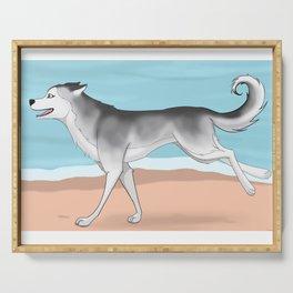 Husky run on the beach 02 Serving Tray