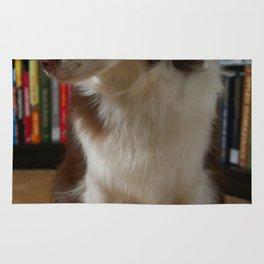Doggie Librarian Rug