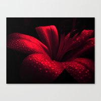 ruby Canvas Prints featuring Ruby by Vitta