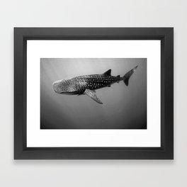 Big Fish, B & W Framed Art Print