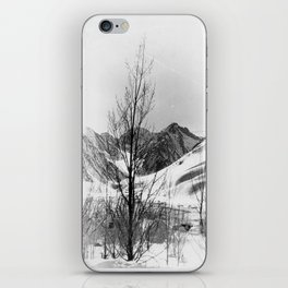 snow scene iPhone Skin