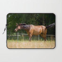 Royal class of horses, an Arabian thoroughbred Laptop Sleeve