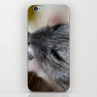 hamster iPhone & iPod Skins featuring Tiny Hamster by IowaShots