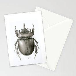 Ox Beetle/Strategus antaeus Stationery Cards