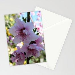 Pastel Shades of Peach Tree Blossom Stationery Cards