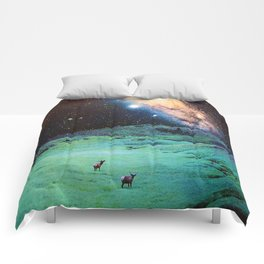 The View Comforters