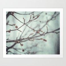 Wintermint. Art Print