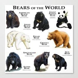 Bears of the World Canvas Print