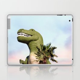 Cabazon Laptop & iPad Skin