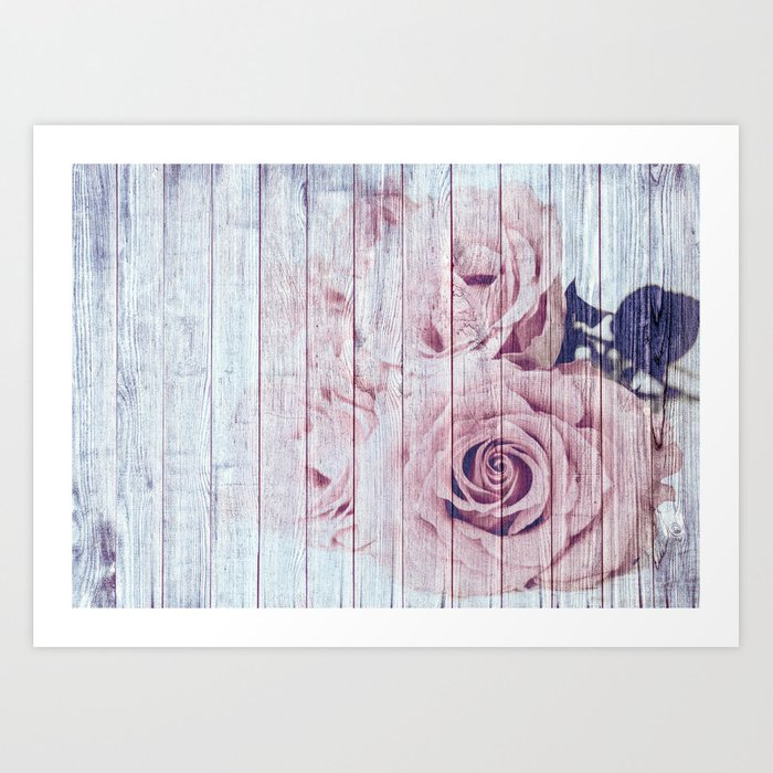 Shabby Chic Dusky Pink Roses On Blue Wood Background Art Print By