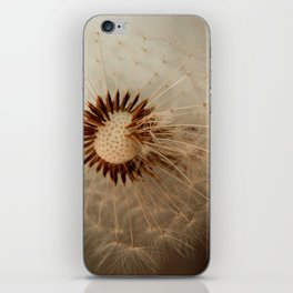 a wish iPhone Skin