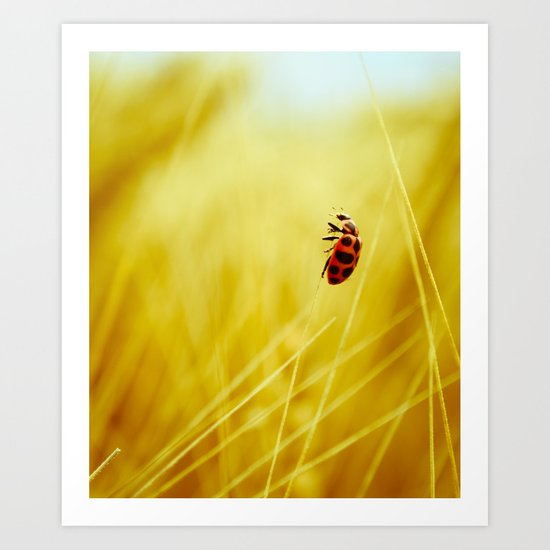 to the wind. Art Print