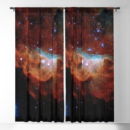 Hubble Telescope: Cosmic Reef (2020), NGC 2014, NGC 2020 Blackout Curtain