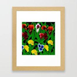 Large Calla Lillies Framed Art Print