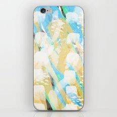 Glacier  iPhone & iPod Skin