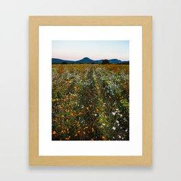 Canatlan Framed Art Print