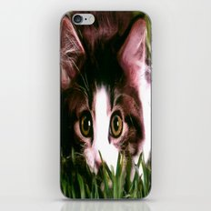 POUNCE iPhone & iPod Skin