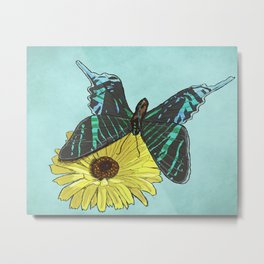 Perfectly Balanced Butterfly Metal Print