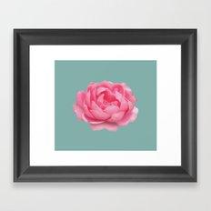 Rose on mint Framed Art Print