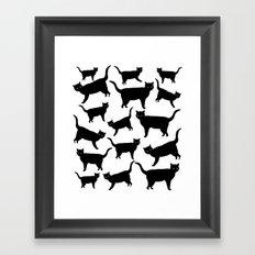 acro-cats Framed Art Print