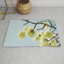 Budding White Blossoms Against A Blue Sky Rug