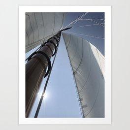 Sail Newport Art Print