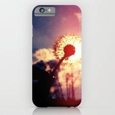 Dandelion in the Sun iPhone 6s Slim Case