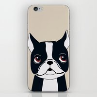 frenchie iPhone & iPod Skins featuring Frenchie by Darish