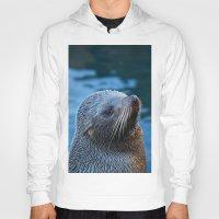 seal Hoodies featuring Fur Seal by Sean Foreman