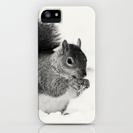 Squirrel Animal Photography iPhone Case